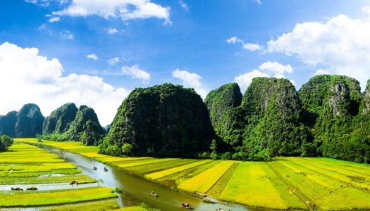 Ninh Binh (Tam Coc) Tour